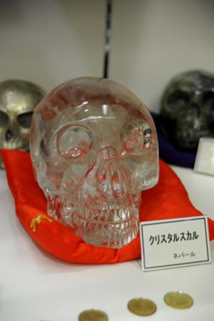Skullmuseum004