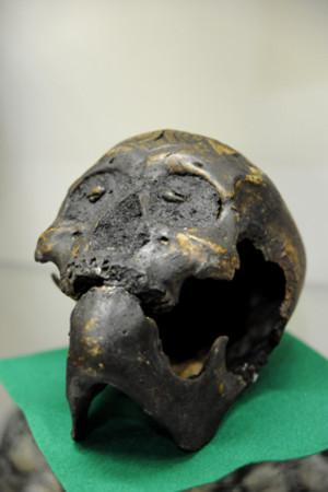 Skullmuseum005