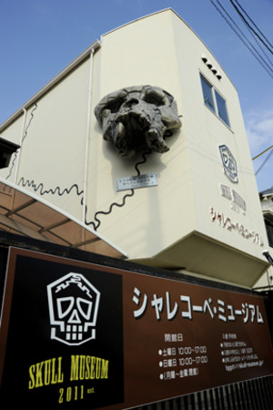 Skullmuseum018